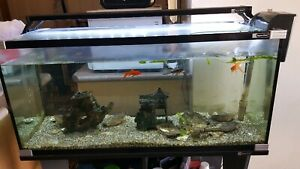 Aqua one 3ft fish tank with led light and stand