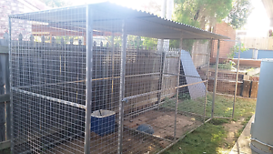 Dog cage/kennel (read discription) Collingwood Park Ipswich City Preview