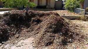 Free mulch/ woodchips Beldon Joondalup Area Preview