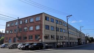 INDUSTRIAL AND COMMERCIAL SPACE FOR RENT