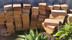 FREE Brick pavers approx 100 Fremantle Fremantle Area Preview