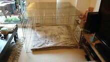 Vebo Pet Large enclosed exercise pen with lockable door Surry Hills Inner Sydney Preview