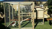 Chicken Coop The Vines Swan Area Preview