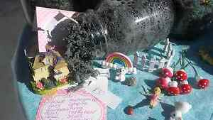 Fairy garden PRICE REDUCED ONE WEEK ONLY!  $25 Woy Woy Gosford Area Preview