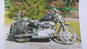 2010 Harley Davidson sportster custom Gladesville Ryde Area Preview