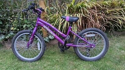 Ammaco Jewel 18 inch 6 Speed Mountain Bike for Girls - Purple