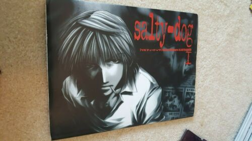Saiyuki Kazuya Minekura Salty Dog Art Book Volume 1