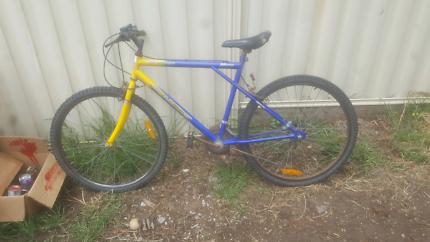 Free bike pick up kurri kurri