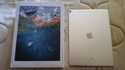 iPad Pro 12.9 512gb wifi/cell