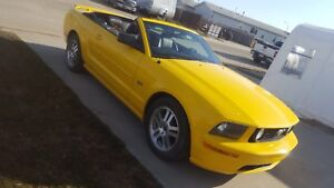 2005 Mustang gt 4.8L v8 engine need sold today
