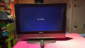 "FLAT SCREEN (INSIGNIA) 26"" LCD TV"