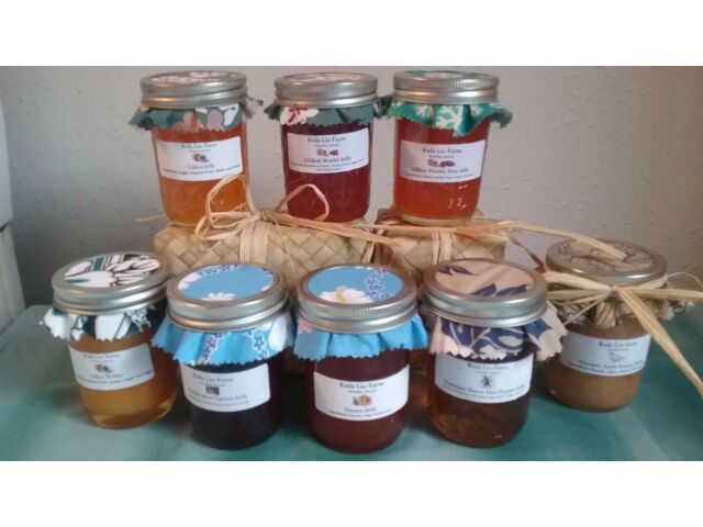 HOMEMADE IN HAWAII Wild Tropical Fruits & Berries JELLY JAMS & BUTTERS ~ 8 oz