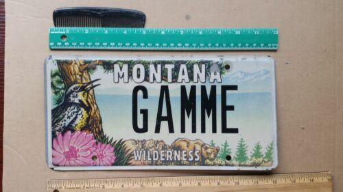 License Plate, Montana, Vanity: GAMME French (Range), Meadowlark, Bear