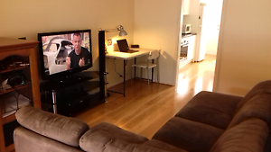 North Adelaide unit for rent North Adelaide Adelaide City Preview