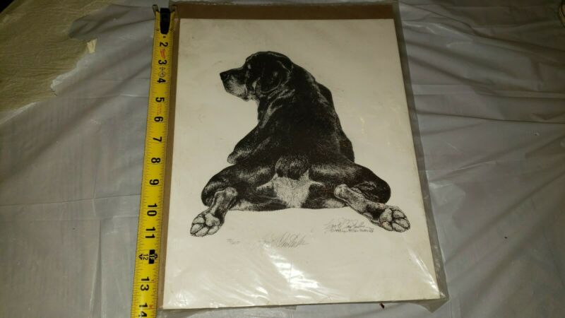 ROTTWEILER Dog Print Signed by Artist