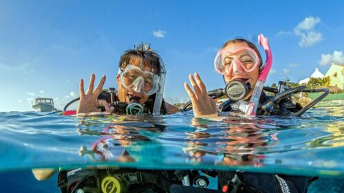 PADI OPEN WATER ELEARNING ONLINE CLASS YOU SAVE $56.00