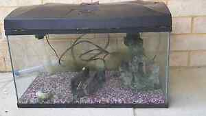 Approx 80ltr blue planet tank just needs new filter Forrestdale Armadale Area Preview