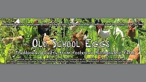 Real free range ethical poultry and fresh eggs Cremorne North Sydney Area Preview