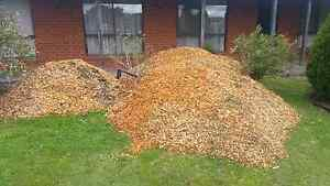 Free gumtree mulch Kilmore Mitchell Area Preview