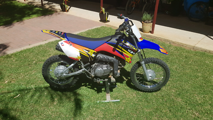 2010 Yamaha TTR 110