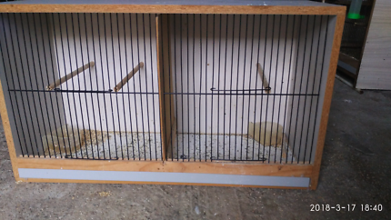 breeding budgies.with cabinet