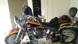 Harley Davidson fatboy 105th anerversary modle Swansea Lake Macquarie Area Preview
