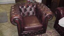 Chesterfield Leather Armchair Balhannah Adelaide Hills Preview