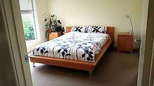 For Rent Master Bedroom ensuit / MARION MALL -FLINDERS UNIVERSITY Seacombe Gardens Marion Area Preview