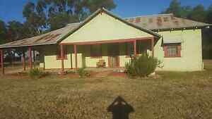 Room available Collingullie Wagga Wagga City Preview
