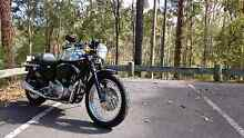 1996 Harley Davidson Sportster 883 Cafe Racer Wavell Heights Brisbane North East Preview
