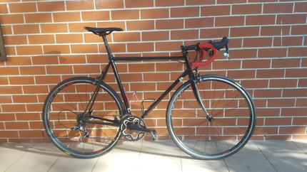 Steel Road bike with Carbon fibre fork