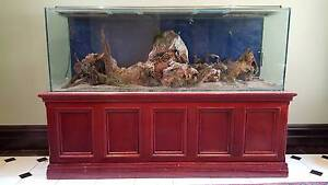 6 Foot Tank /  Aquarium with mahogany stand Prospect Prospect Area Preview