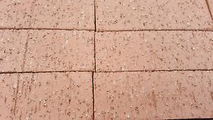 Common Clay Brick 48c plus gst Free Sydney Delivery 2000+ Bricks Granville Parramatta Area Preview