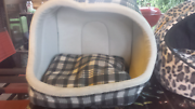 Cat beds or dog beds Holloways Beach Cairns City Preview