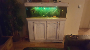 4ft fish tank with loads of fish and extras Secret Harbour Rockingham Area Preview