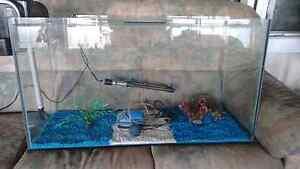 3 foot aquarium New Norfolk Derwent Valley Preview