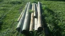 assorted pine logs Mount Barker Plantagenet Area Preview