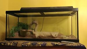75 GAL TANK AND ACCESSORIES FOR REPTILES.