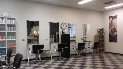 Estabished Hairdressing Salon For Sale - Camden
