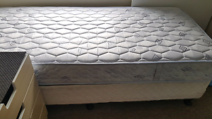 Box Spring - King Single mattress Coogee Eastern Suburbs Preview