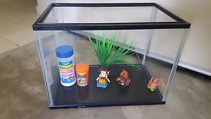 Fish Tank + accessories North Lakes Pine Rivers Area Preview