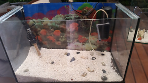 Fish tank 70L with heater, filter and pebbles Palmyra Melville Area Preview