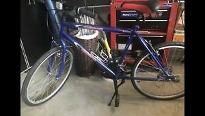 CCM 16 Speed Bicycle