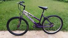 Large Dunlop Bicycle (Purple) Beverly Hills Hurstville Area Preview
