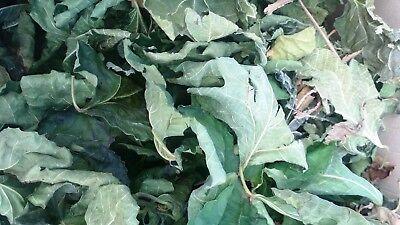 450g Tea - 85g / 3oz to 450g / 15.80z FIG LEAF DETOX FICUS CARICA DRIED HERB ORGANIC TEA