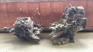 Fish Tank Decorations And Driftwood Fish Gumtree Australia Pine