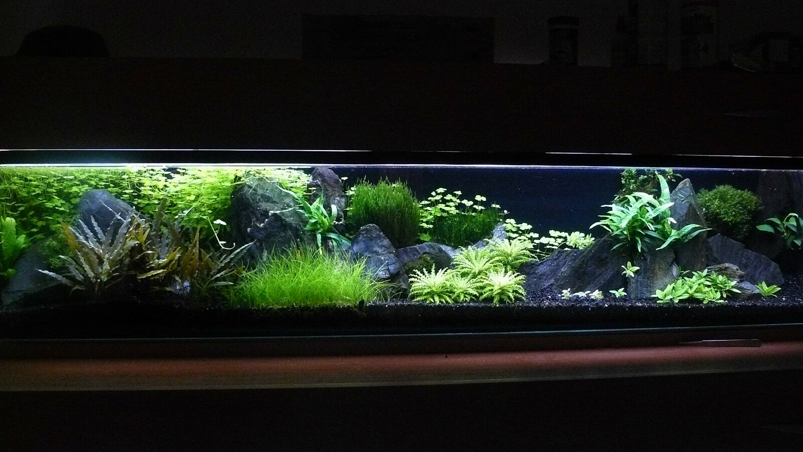 20 kg natural black aquarium gravel 2 5mm aquascaping for Vendeur aquarium
