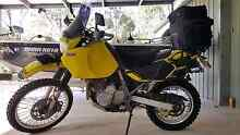 Dr 650 GREAT BIKE Clarence Town Dungog Area Preview