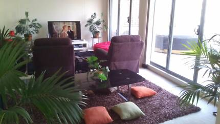 MALE for ABSOLUTELY CLEAN SPACIOUS SUB-PENTHOUSE Pyrmont Inner Sydney Preview