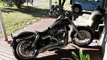 HARLEY DAVIDSON AAA QUALITY PRIDE AND JOY 4 SALE DUE TO INJURY! Thurgoona Albury Area Preview